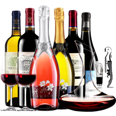 【百元好酒】法国进口红酒领衔6支大礼包 起泡酒/红/白葡萄酒组合醒酒器装750mlx6